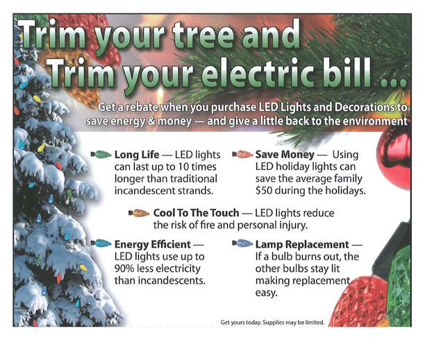 Holiday Lighting Rebate Coupon